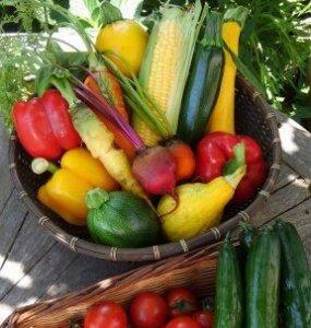 アグロノームのカラフル野菜